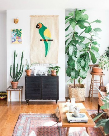 Woontrend: tover je interieur om tot bohemian urban jungle! | Woonblog